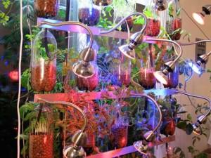 Farm Fountain : Art / Aquaculture