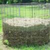 Black Gold : Composting 101