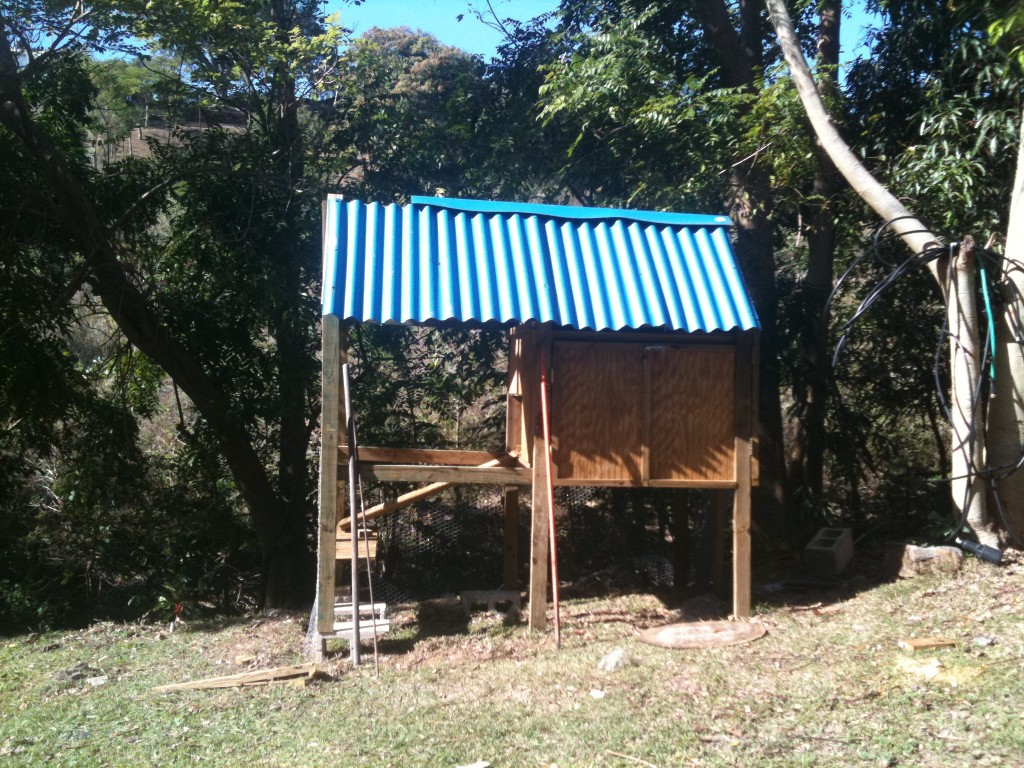 tropical chicken coop plans