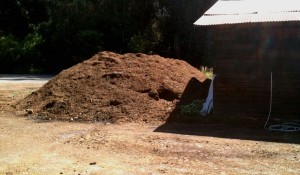 Compost Pile Water Heater